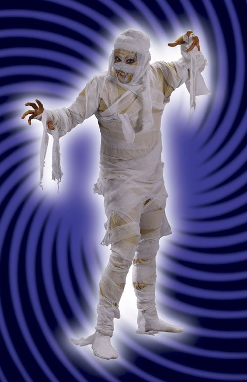 Mummy Costume - Costumes For All Occasions FW5418 Mummy Man