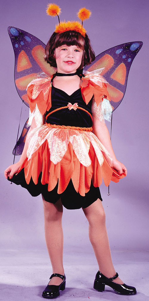 Butterfly Costume - Costumes For All Occasions FW5821LG Butterfly Costume Child Lrg