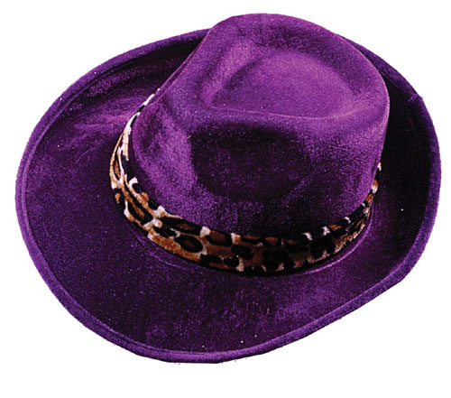 Pimp Hat - Costumes For All Occasions FW8069PR Hat Pimp Dark Purple
