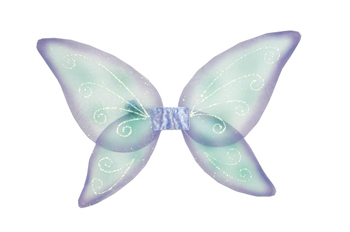Costumes For All Occasions FW8111FPR Wings Child Fairy Blue Green