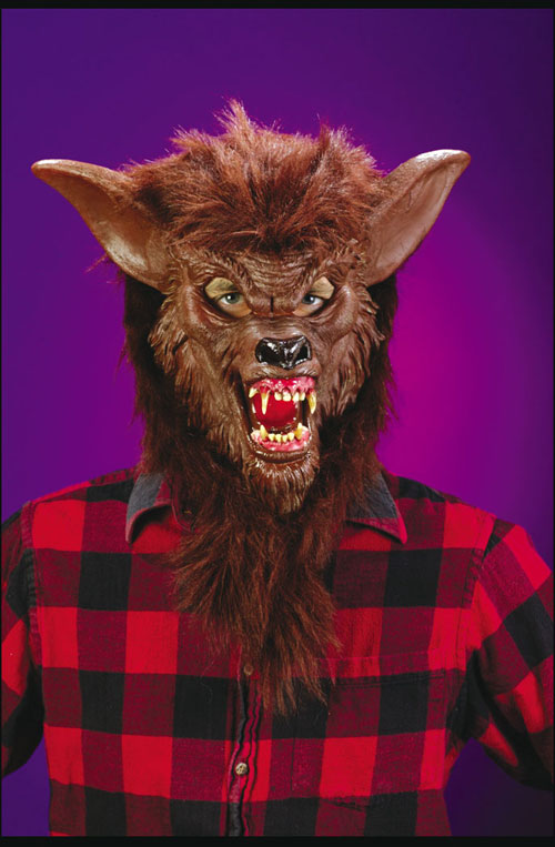 Werewolf Costumes - Costumes For All Occasions FW8546WB Werewolf Deluxe Mask