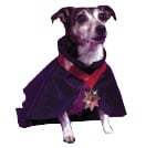 Costumes For All Occasions FW9000DR Pet Costume Dracula