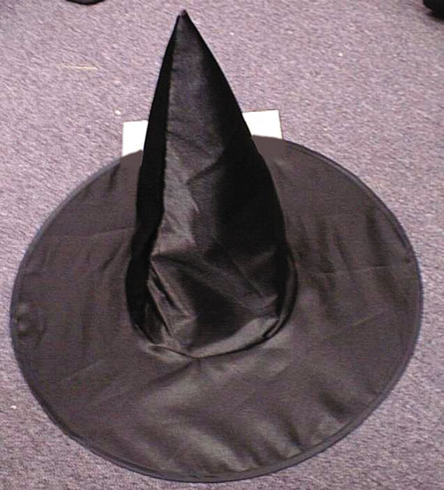 Witch Costumes - Costumes For All Occasions FW9113K Witch Hat Deluxe Satin Child