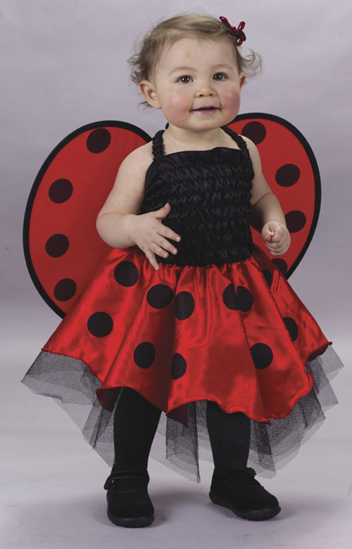 Infant Costumes - Costumes For All Occasions FW9666 Lady Bug Infant Costume