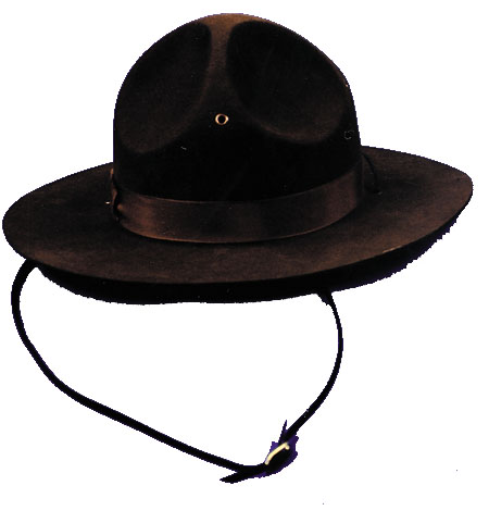 Campaign Hat - Costumes For All Occasions GA32LG Campaign Hat Large