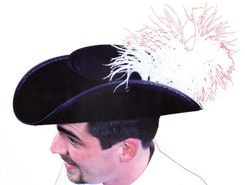 Cavalier Hat - Costumes For All Occasions GC03 Cavalier Hat Econo W Feather