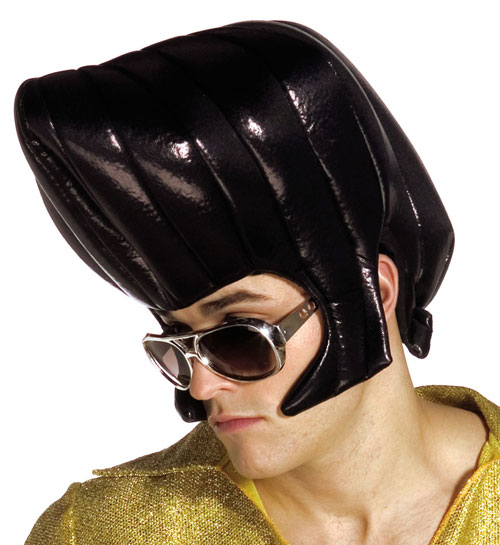 Costumes For All Occasions GC1330 King Wig Black
