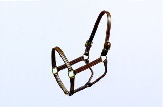 Beiler S & Supply Thoroughbred Horse Halter Brown 1 Inch - 191