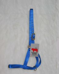 Hamilton Halter Company Bull 1 Turn Out Halter Blue - 30DB BL