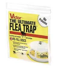Woodstream Lawn & Grdn D Universal Flea Trap Refill 3 Pack - M231