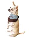 Cool Bandana - Kyjen Company Bandana Cool It Assorted Small - OH00945