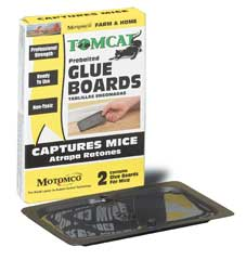 Durvet Motomco Tomcat Mice Glue Board  Pack Of 24 - 32419