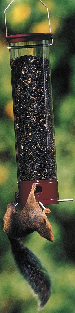 Droll Yankees  Inc Yankee Dipper 90 Degree Bird Feeder (GC1268 DYYCPD90) photo
