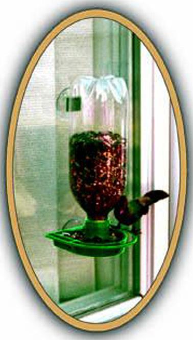 WP16137 Window Bird Feeder - Green (GC2020) photo