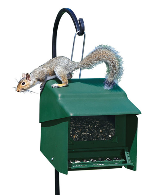 Homestead HS3201S Super Stop A Squirrel Bird Feeder