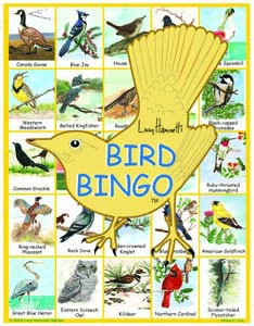 Lucy Hammet Bingo Games LH2877 Bird Bingo Educational Game