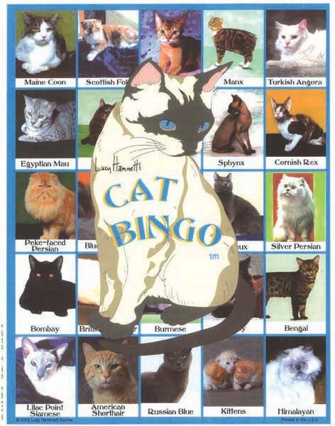 Lucy Hammet Bingo Games Cat Bingo Game LH3377