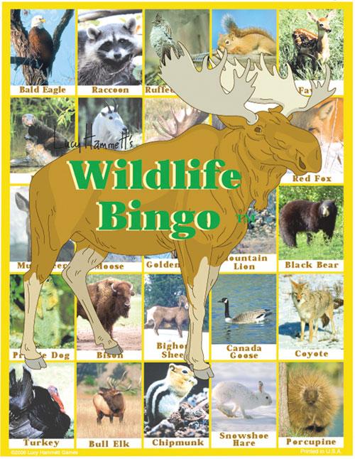 Lucy Hammet Bingo Games Wildlife Bingo