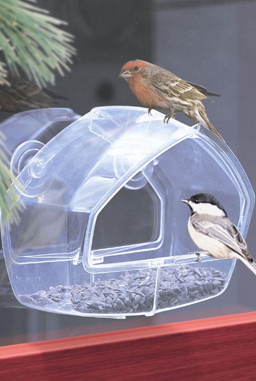 Wild Bird Window Feeder - Clear (ZX9GC3431 NO72460 No Sweat My Pet) photo