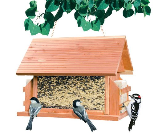 8lb The Lodge Wood Bird Feeder (ZX9GC3481 NO299393 No Sweat My Pet) photo