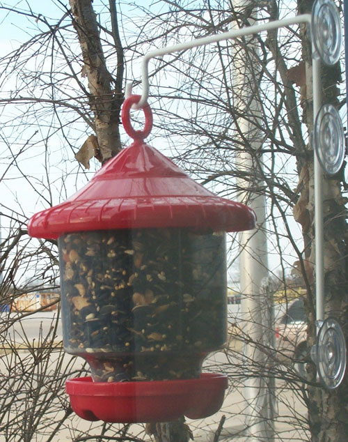 Songbird Essentials Window Suction Cup Hanger GC4156