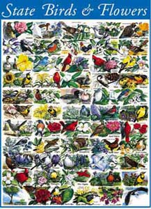 White Mountain Puzzles State Birds and Flowers Puzzle