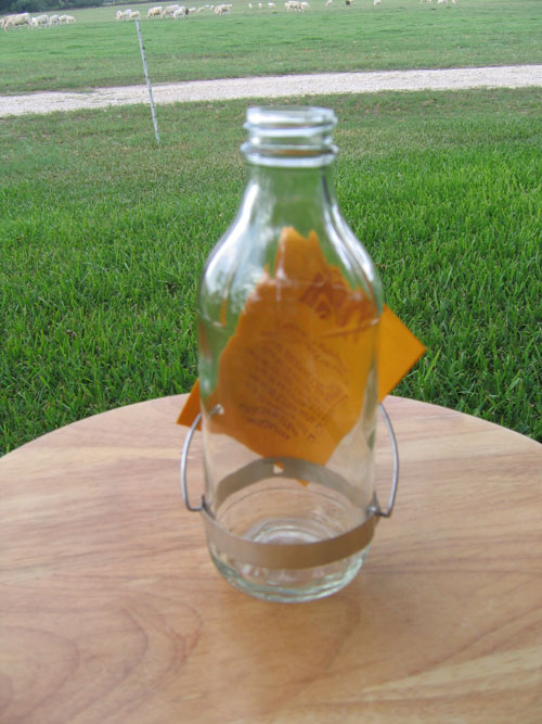 Best-1 BESTR8 8 Oz Replacement Bottle