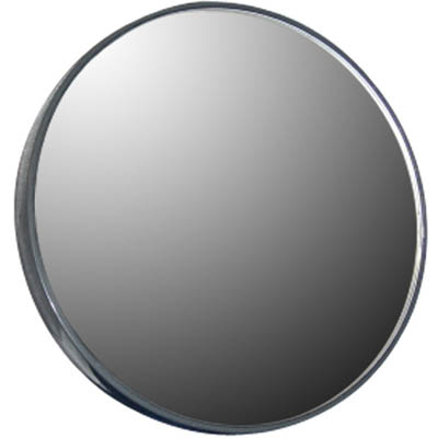 Zadro FC20X  20X Magnification Spot Mirror - Light Gray ZDR009