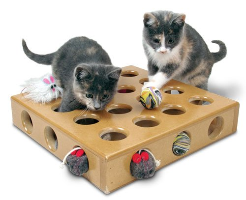 Smart Cat 3833 PeekAPrize Toy Box with 2 toys Case of 3