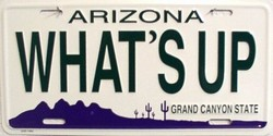 LP - 1066 AZ Arizona What s Up License Plate - 1492