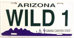 LP - 1085 AZ Arizona Wild 1 License Plate - 2488