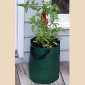 Bosmere K715 Tomato Planter Bags Green