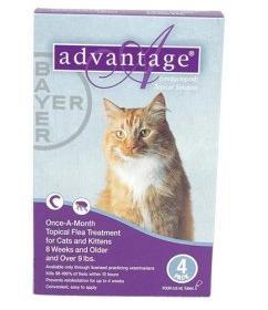 Image of Bayer ADVANTAGE4-PURPLE Advantage 4 Pack Cat 9 Lbs. & Up - Purple