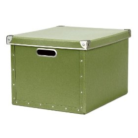 Resource International 8060525 Cargo Naturals Dual File Box- Sage