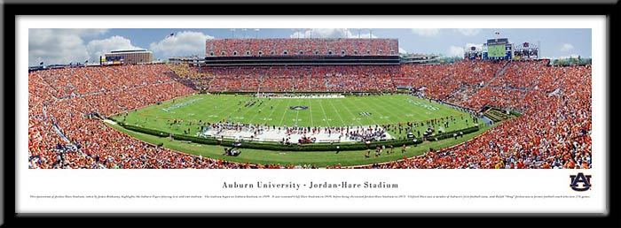 Auburn University Framed Stadium Print