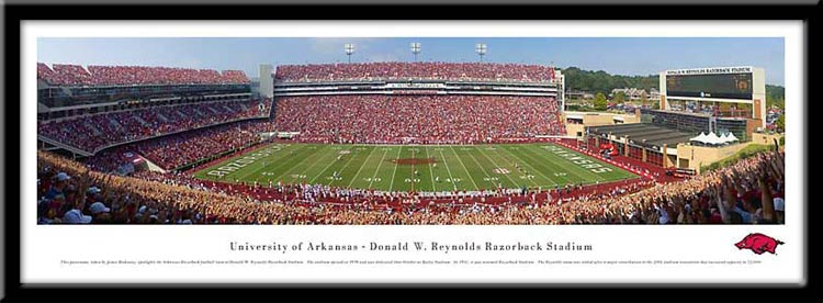 University of Arkansas Framed Stadium Print