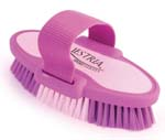 6.75 Inch Small Equestrian Sport Oval Body Brush - Purple  - 2171-2