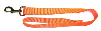 1 in. x 2 ft. Single Thick Nylon Lead - Orange  - SLOS 2OR