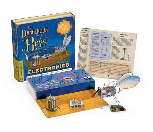 Thames & Kosmos 600002 The Dangerous Book for Boys Essential Electronics THKO054