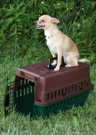 Grain Valley 599 Sportsman s Choice Portable Kennel- Small