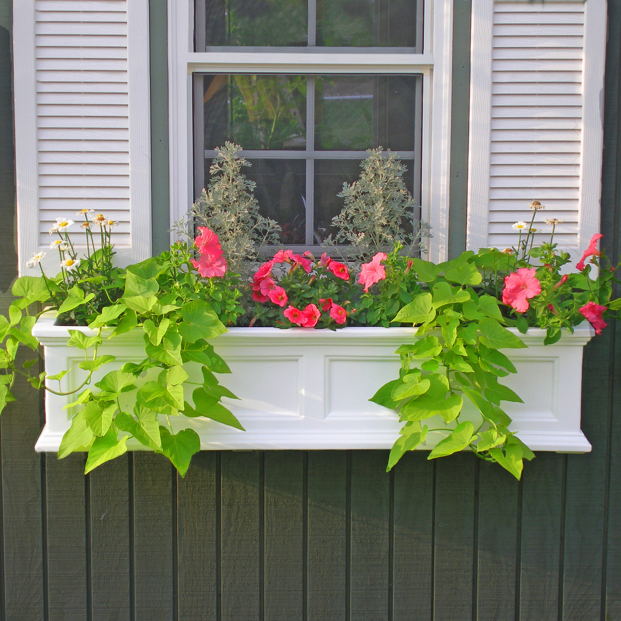 MAYNE 5823W Fairfield 4ft Window Box- White
