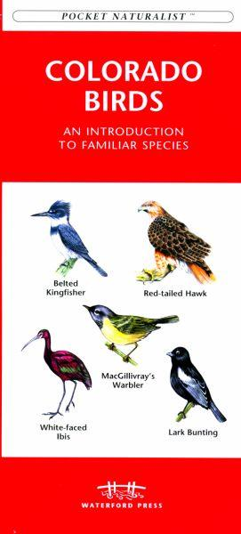 Waterford Press WFP1583550687 Colorado Birds Book: An Introduction to Familiar Species (State Nature Guides)