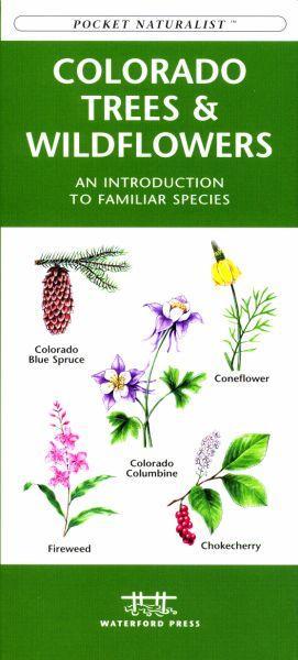 Colorado Trees amp; Wildflowers Book
