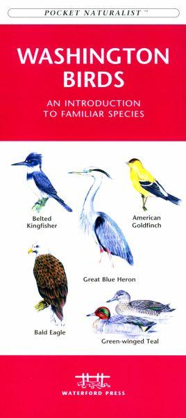 Waterford Press WFP1583551196 Washington State Birds Book: An Introduction to Familiar Species (State Nature Guides)
