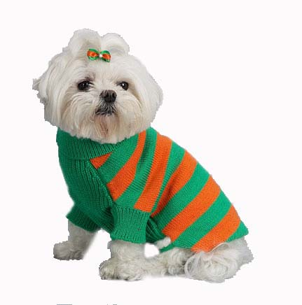 A Pets World 07153803-14 Mercerized Cotton Grass-Orange Rugby Dog Sweater