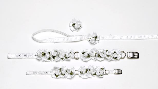 A Pets World 14000201-16 Ribbon Dog Collar + Leash Set- Wedding Petal Flower Rosettes with Pearls