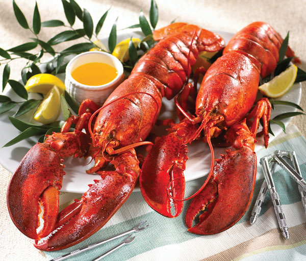 Lobster Gram LG4J LOBSTER GRAM DINNER FOR FOUR WITH 2 LB LOBSTERS