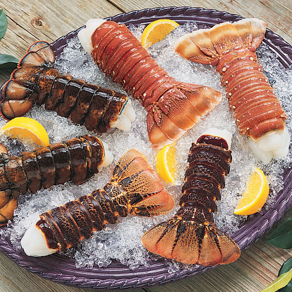 Lobster Gram SWTS4 SWEETEST LOBSTER TAIL SAMPLER WITH 12 LOBSTER TAILS