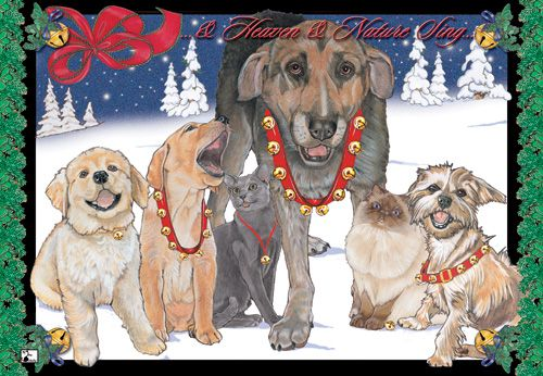 Pipsqueak Productions C400 Mix Dog With Cat Holiday Boxed Cards