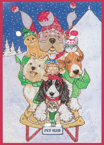 Pipsqueak Productions C417 Mix Dog With Cat Holiday Boxed Cards